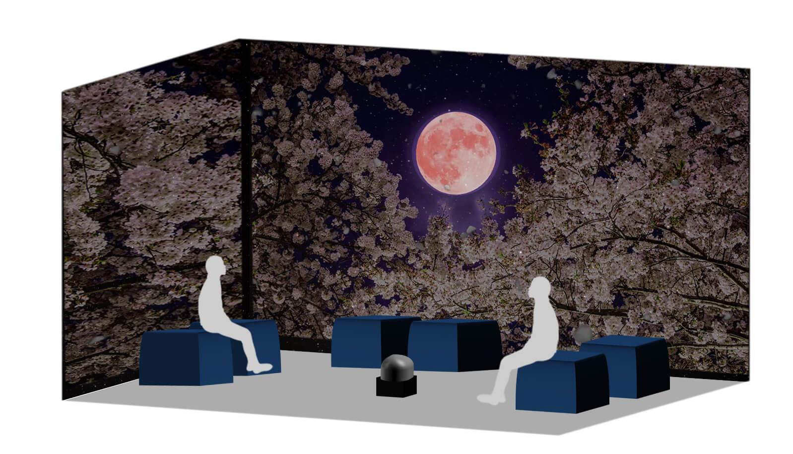 Galaxy Night Blossom 原宿