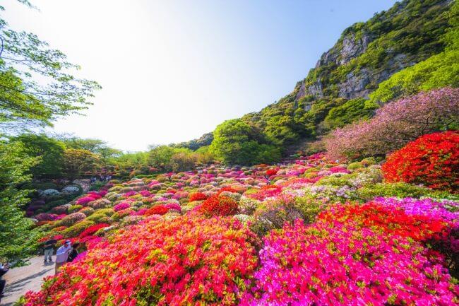 御船山楽園 花まつり 佐賀